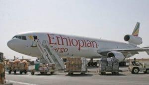 Ethiopian Cargo Bayar Biaya Parkir Rp 22 Juta di Bandara Hang Nadim